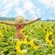 blijheid - focus op dingen die goed gaan